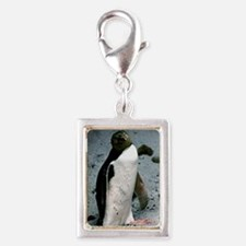 Yellow-eyed penguin Silver Portrait Charm