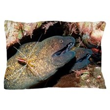 Yellow-margined morays Pillow Case