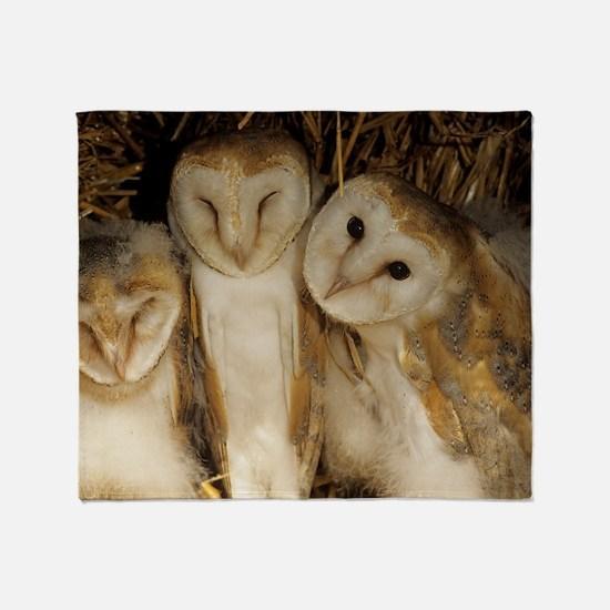 Young barn owls Throw Blanket