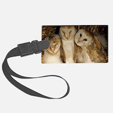 Young barn owls Luggage Tag