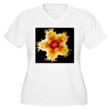 Young gibbous sta T-Shirt