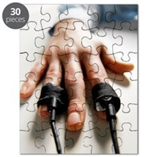 Lie detector test Puzzle
