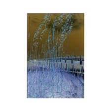 Blue Sea Oats Rectangle Magnet