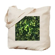 Green Ivy Tote Bag