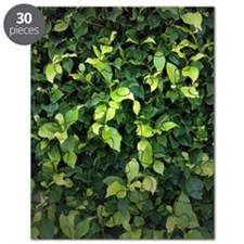 Green Ivy Puzzle