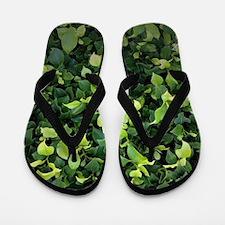 Green Ivy Flip Flops