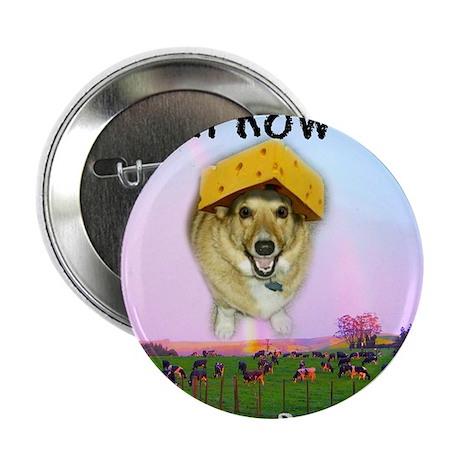 """Barney Boots Memorial Mug 2.25"""" Button"""