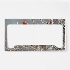 Winter Cardinal License Plate Holder