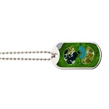 Lung fibrosis, CT scan Dog Tags