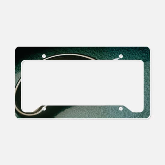 Medical equipment: scalpel an License Plate Holder