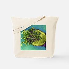 Measles virus, TEM Tote Bag