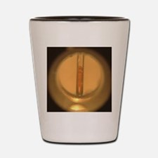 Melting point apparatus Shot Glass