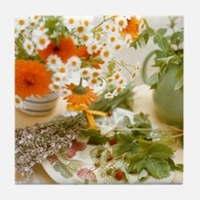 Medicinal plants Tile Coaster