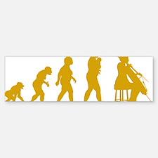 Evolution-Woman-04-c Bumper Bumper Sticker