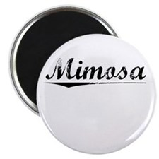 Mimosa, Vintage Magnet