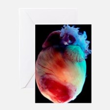 Mouse heart Greeting Card