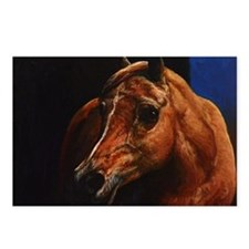 Arabian Horse Postcards (Package of 8)