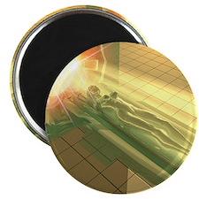 MRI scanner Magnet