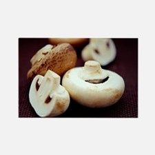 Mushrooms Rectangle Magnet