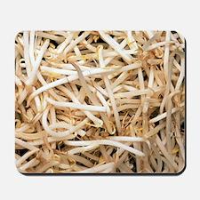 Mung bean sprouts Mousepad