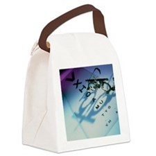 Ophthalmology test frames and eye Canvas Lunch Bag