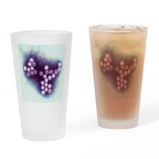 Norovirus particles, TEM Drinking Glass