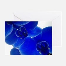 Sensual Blue Orchilds by KD Greeting Card