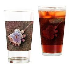 Ovarian cancer cell, SEM Drinking Glass