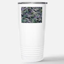 m8500438 Stainless Steel Travel Mug
