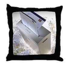 h1001326 Throw Pillow