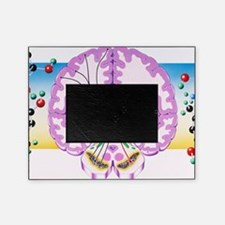 m2400392 Picture Frame