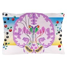 m2400392 Pillow Case