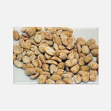 Peanuts Rectangle Magnet