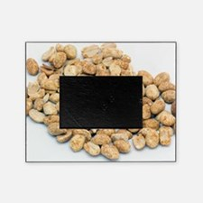 Peanuts Picture Frame