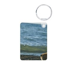 Dog relaxing on beach Keychains