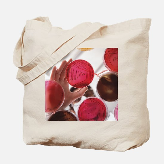 Petri dish bacterial cultures, picking co Tote Bag