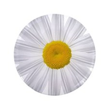 "White Daisy 3.5"" Button"