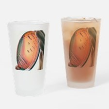 Petri-dish culture of Escherichia c Drinking Glass