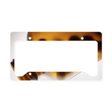 m6251502 License Plate Holder