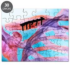 m3301543 Puzzle