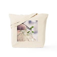 g2800426 Tote Bag