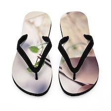 g2800426 Flip Flops