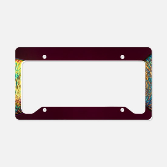 PLM of two synthetic liquid c License Plate Holder