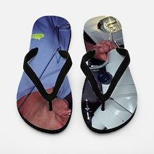 Plankton research Flip Flops