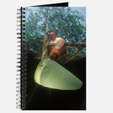 Plankton research Journal