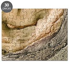 m1950119 Puzzle