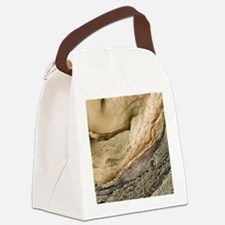 m1950119 Canvas Lunch Bag
