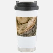 m1950119 Stainless Steel Travel Mug