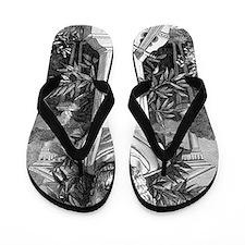 Plato, Ancient Greek philosopher Flip Flops