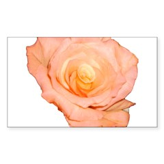 Peach Rose Rectangle Decal